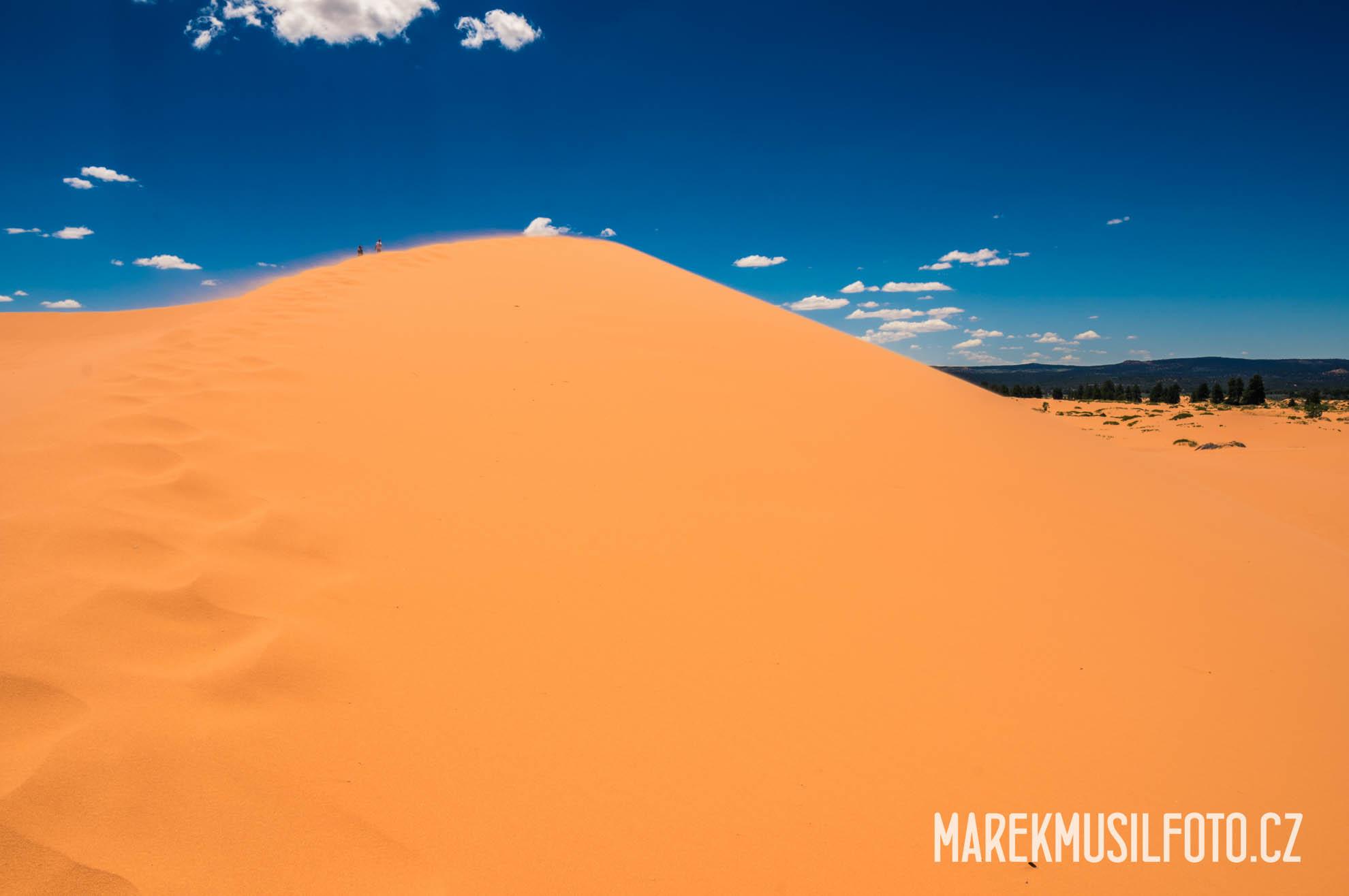 Cesta po USA - Coral Pink Dunes