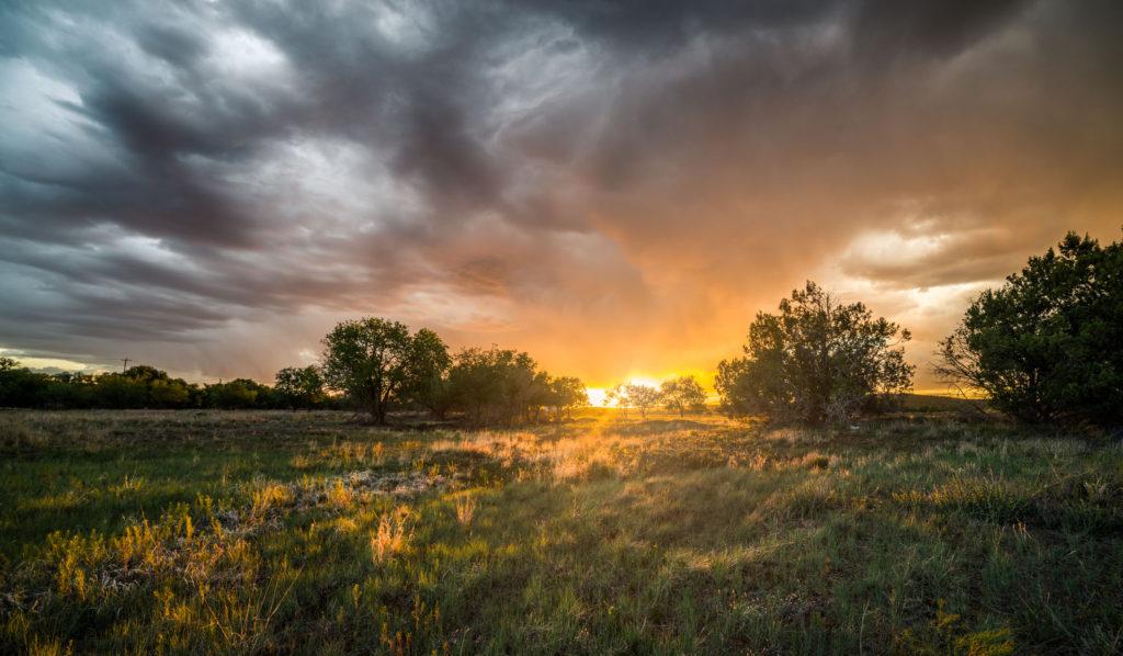 Blog z USA 2016 - Ash Fork